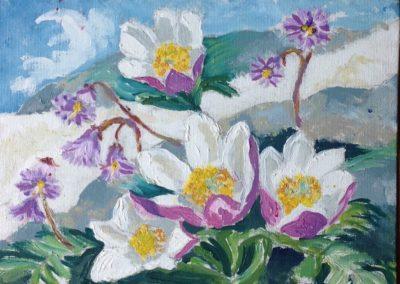 FIORI DI MONTAGNA Anemone Alpino e Soldanella 30x30 pittura ad olio su tela 2015