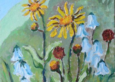 FIORI DI MONTAGNA Arnica Montana 30x30 pittura ad olio su tela 2015