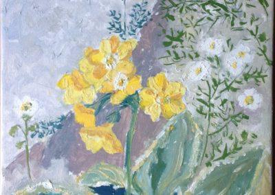 FIORI DI MONTAGNA Primula Veris 20x25 pittura ad olio su tela 2015