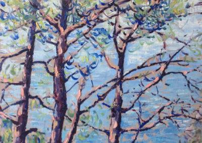 MONTE DI PORTOFINO dipinti all'aperto 60x50 pittura ad olio su tavoletta 1995