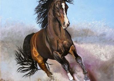 Freedom and energy | Olio su tela cm. 50x40