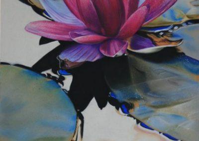 Galleggiando delicatamente | Pastello su carta cm. 39,5x24